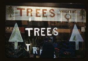 The Word 'Trees'