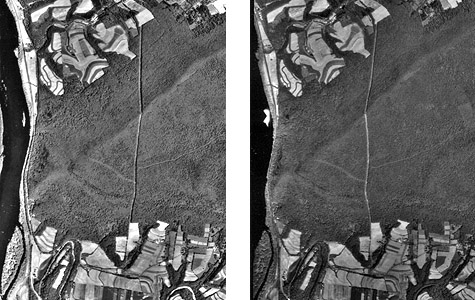 Two aerial images that make up a stereopair