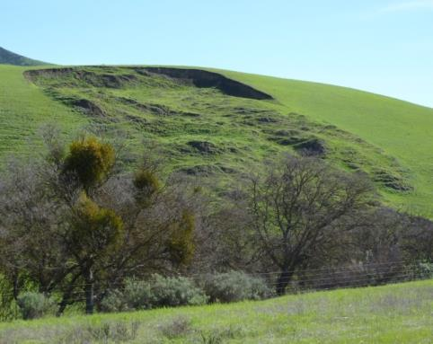 A soft grassy hill. The centre part of the hill gave away and shifted downwards.