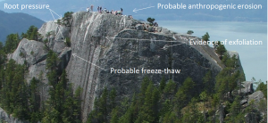 Root pressure, freeze thaw, anthropogenic erosion, and exfoliation.