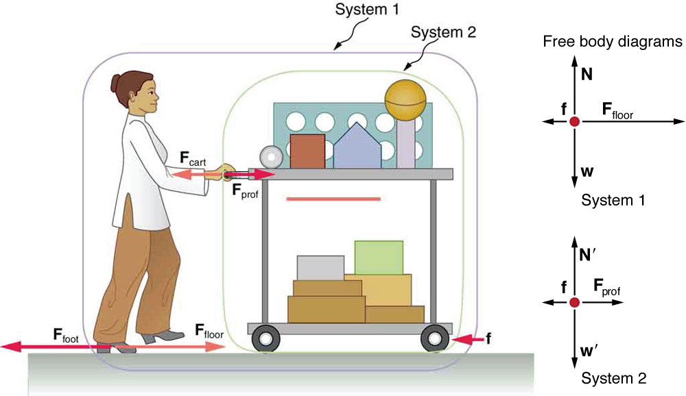 A professor is pushing a cart of demonstration equipment. Two systems are labeled in the figure. System one includes both the professor and cart, and system two only has the cart. She is exerting some force F sub prof toward the right, shown by a vector arrow, and the cart is also pushing her with the same magnitude of force directed toward the left, shown by a vector F sub cart, having same length as F sub prof. The friction force small f is shown by a vector arrow pointing left acting between the wheels of the cart and the floor. The professor is pushing the floor with her feet with a force F sub foot toward the left, shown by a vector arrow. The floor is pushing her feet with a force that has the same magnitude, F sub floor, shown by a vector arrow pointing right that has the same length as the vector F sub foot. A free-body diagram is also shown. For system one, friction force acting toward the left is shown by a vector arrow having a small length, and the force F sub floor is acting toward the right, shown by a vector arrow larger than the length of vector f. In system two, friction force represented by a short vector small f acts toward the left and another vector F sub prof is represented by a vector arrow toward the right. F sub prof is longer than small f.