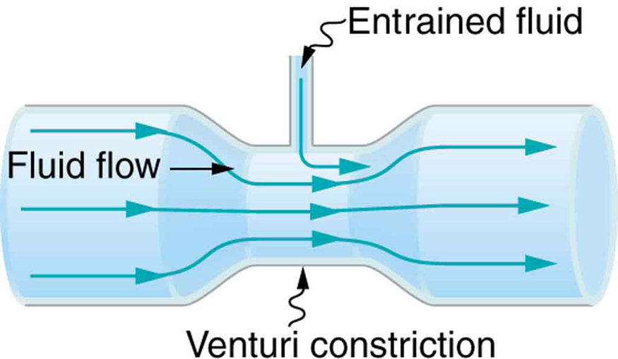Figure shows a venturi tube, a cylindrical tube broader at both the ends and narrow in the middle. The narrow part is labeled as venturi constriction. The flow of fluid is shown as horizontal arrows along the length of the tube toward the right. The flow lines are closer in the center and spread apart at both the ends. There is an opening on the top portion of the narrow section for the entrained fluid to enter.