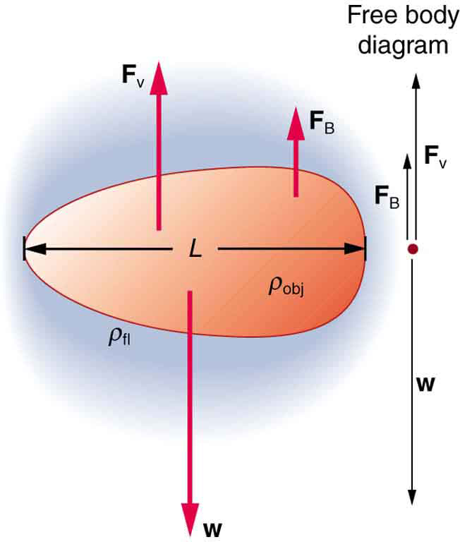 Gravitational Force Fluid Flow: Motion Of An Object In A Viscous Fluid