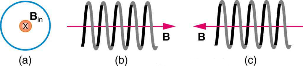 Figure a shows the magnetic field into the page in the middle of a loop. Figure b shows the magnetic field within a coil running from left to right. Figure c shows B running from right to left within a coil.