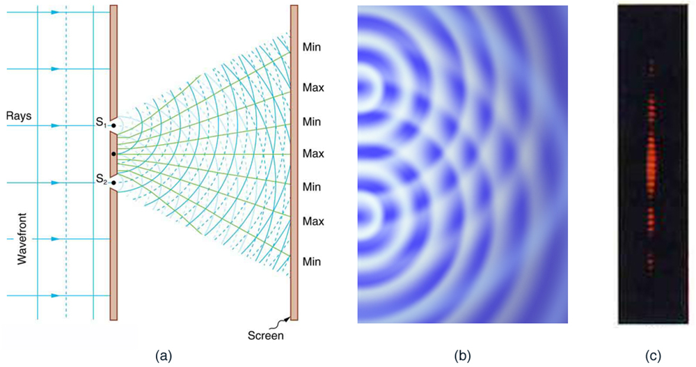 The figure contains three parts. The first part is a drawing that shows parallel wavefronts approaching a wall from the left. Crests are shown as continuous lines, and troughs are shown as dotted lines. Two light rays pass through small slits in the wall and emerge in a fan-like pattern from two slits. These lines fan out to the right until they hit the right-hand wall. The points where these fan lines hit the right-hand wall are alternately labeled min and max. The min points correspond to lines that connect the overlapping crests and troughs, and the max points correspond to the lines that connect the overlapping crests. The second drawing is a view from above of a pool of water with semicircular wavefronts emanating from two points on the left side of the pool that are arranged one above the other. These semicircular waves overlap with each other and form a pattern much like the pattern formed by the arcs in the first image.  The third drawing shows a vertical dotted line, with some dots appearing brighter than other dots. The brightness pattern is symmetric about the midpoint of this line. The dots near the midpoint are the brightest. As you move from the midpoint up, or down, the dots become progressively dimmer until there seems to be a dot missing. If you progress still farther from the midpoint, the dots appear again and get brighter, but are much less bright than the central dots. If you progress still farther from the midpoint, the dots get dimmer again and then disappear again, which is where the dotted line stops.
