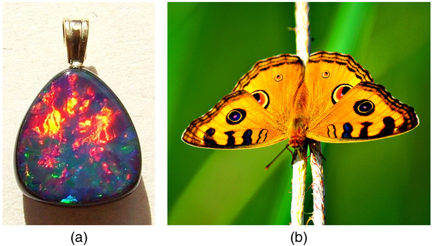Colorful photos of an Australian opal and a butterfly. The opal is full of fiery reds and yellows and deep blues and purples. The butterfly has its yellow wings spread and you can see its characteristic red, blue, and black spots and fringing.