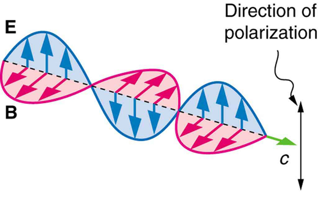 Polarization – College Physics
