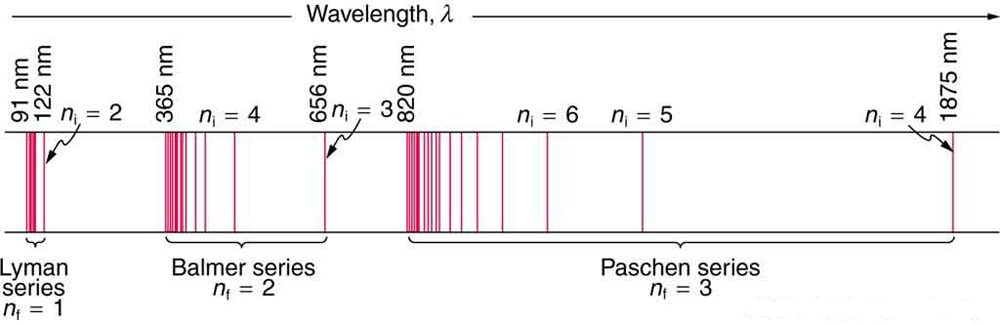 The figure shows three horizontal lines at small distances from each other. Between the two lower lines, the Lyman series, with four vertical red bands in compact form, is shown. The value of the constant n sub f is 1 and the wavelengths are ninety-one nanometers to one hundred nanometers. The Balmer series is shown to the right side of this series. The value of the constant n sub f is two, and the range of wavelengths is from three hundred sixty five to six hundred fifty six nanometers. At the right side of this, the Paschen series bands are shown. The value of the constant n sub f is three, and the range of the wavelengths is from eight hundred twenty nanometers to one thousand eight hundred and seventy five nanometers.