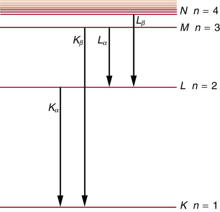 X rays atomic origins and applications college physics different energy levels are shown in the form of horizontal lines the line at the characteristic x ray energycalculate ccuart Image collections