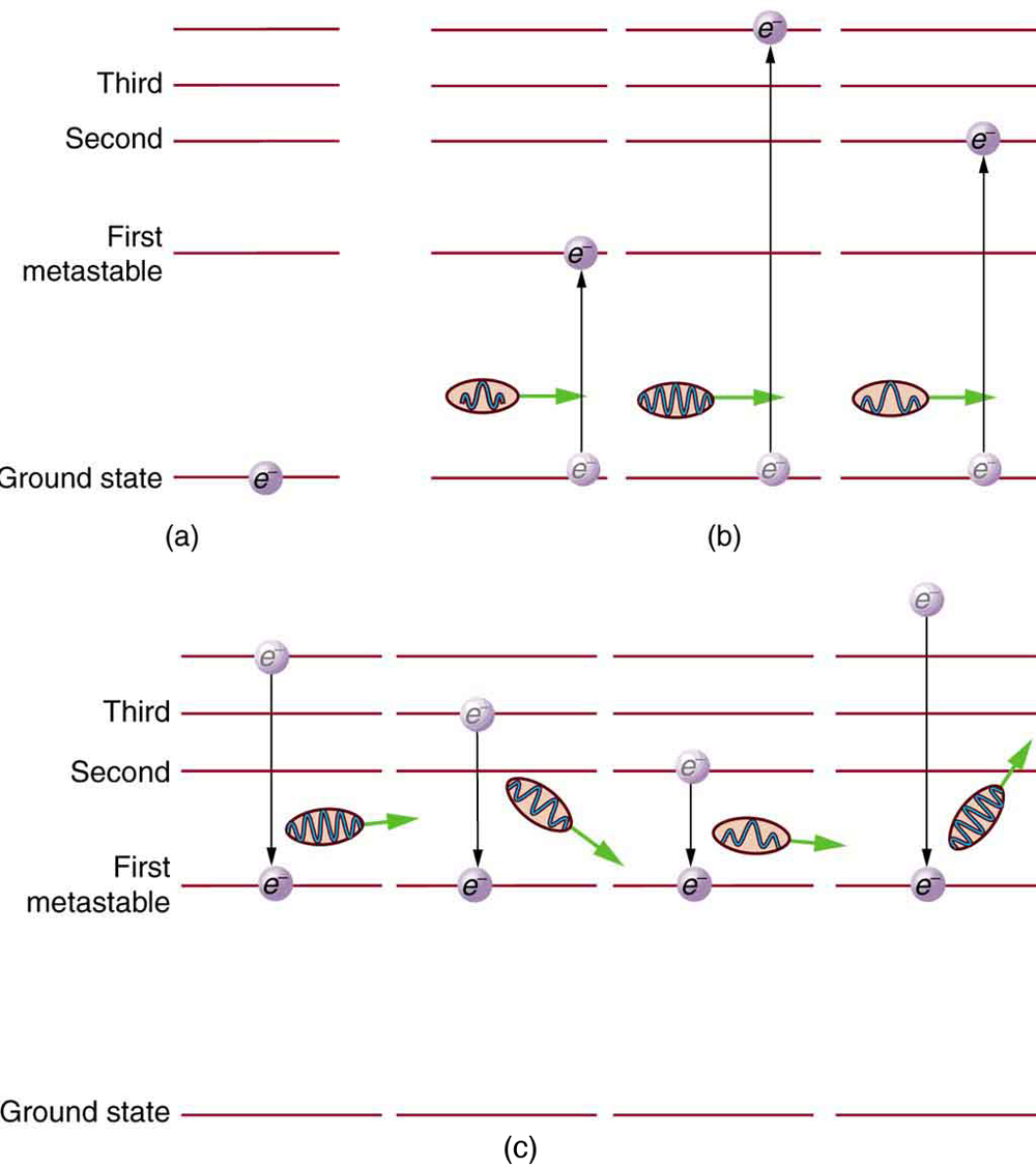 Several layers of parallel lines showing different levels of energy of an atom. The lowest level is ground state, one level up is first metastable state, next level is second metastable state, and so on. In part a, an atom is in the ground state. In part b, atoms move to different states depending on the energy input in the form of photons. An atom with minimum energy input moves to the first metastable level. One with a greater energy input moves to the second level. One with even greater input moves to the fourth level. In part c, atoms originally at levels above the first metastable state give off energy in the form of photons as they drop back down to the first metastable state. The greater the drop, the more energy is given off.