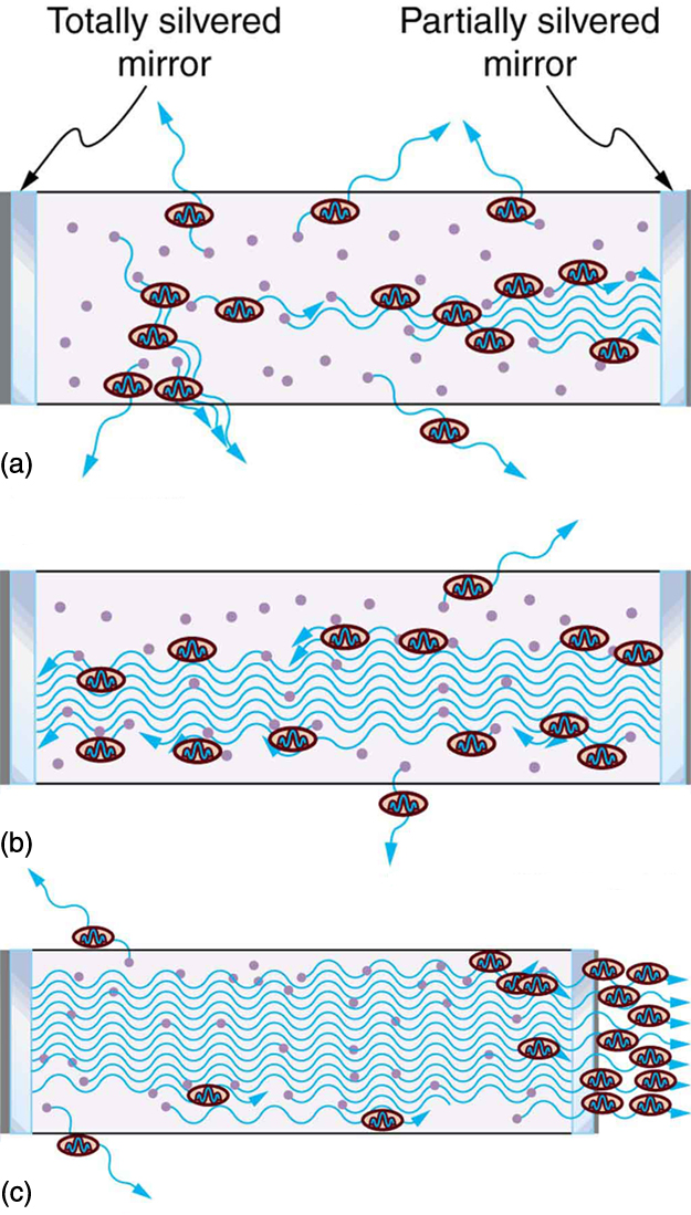 There are three schematic figures showing the construction of a laser. The first figure shows two mirrors. One is a totally silvered mirror on left side and one partially silvered mirror on right side. Thus spontaneous emission begins with some photons escaping and others stimulating further emissions. The next figure shows an increase in stimulated emission by reflection of photons by mirrors. The final figure shows an increased number of stimulated photons escaping the partially silvered mirror on the right side.