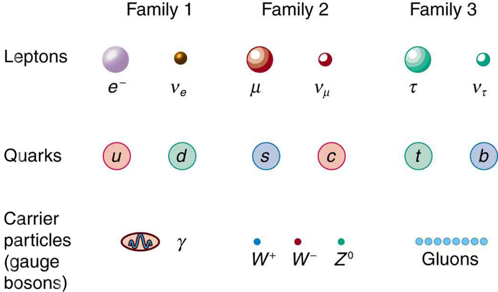 an analysis of the classification of particles into leptons and hadrons Classes of particles should be bosons, leptons, hadrons and baryons first, i had the idea that the particles are classified according to interactions to them ie gravity, weak, electromagnetic and strong nuclear interactions, respectively for from boson to baryon however, problems have raised .