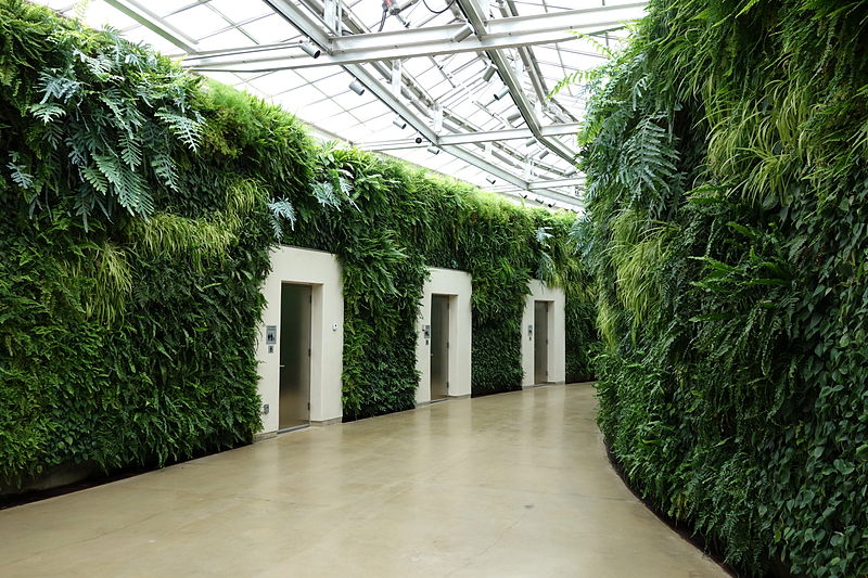 Figure 1.2 Image of interior vertical gardens vegetated with tropical plants