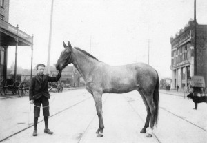 A boy and a horse on Hastings Street near Carrall in downtown Vancouver, ca. 1897. Some of the oldest buildings had stables in their basements. (City of Vancouver Archives, AM54-S4-: Str P175)