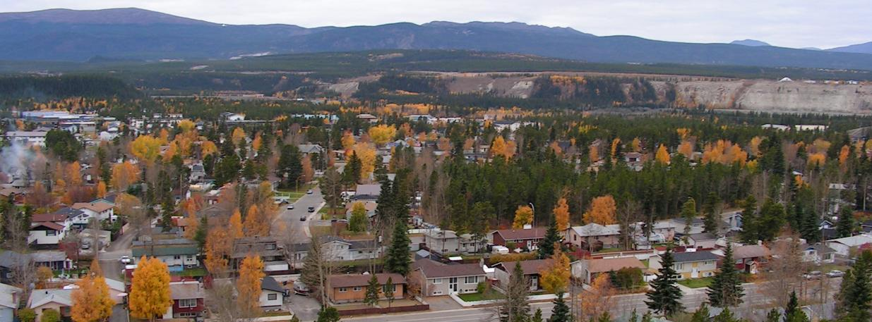 View of a suburb in the autumn. Green and yellow trees are scattered throughout.