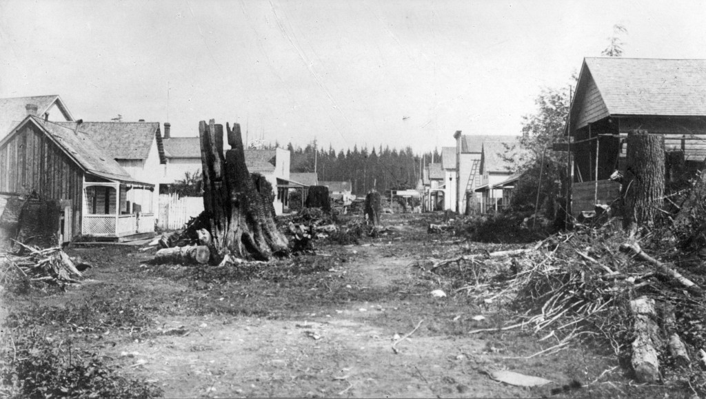A dirt road with a few houses and stumps.