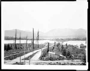 The False Creek mudflats at high tide in 1890, only recently denuded of trees but still a salmon spawning ground and a source of clams.