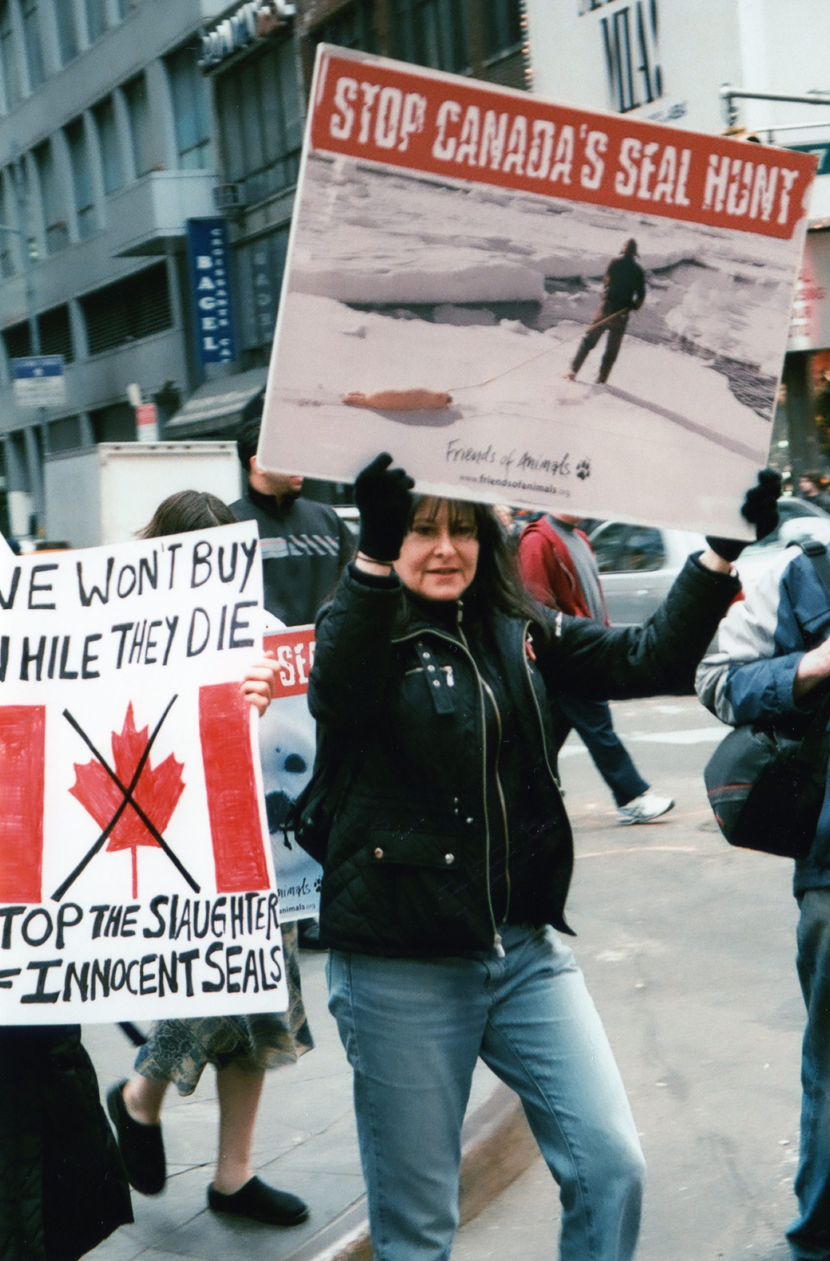 People march with signs protesting Canada's seal hunt.