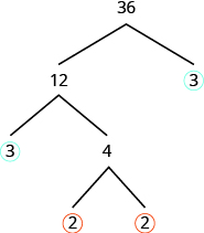 The figure shows a factor tree with the number 36 at the top. Two branches are splitting out from under 36. The right branch has a number 3 at the end with a circle around it. The left branch has the number 12 at the end. Two more branches are splitting out from under 12. The right branch has the number 4 at the end and the left branch has the number 3 at the end with a circle around it. Two more branches are splitting out from under 4. Both the left and right branch have the number 2 at the end with a circle around it.
