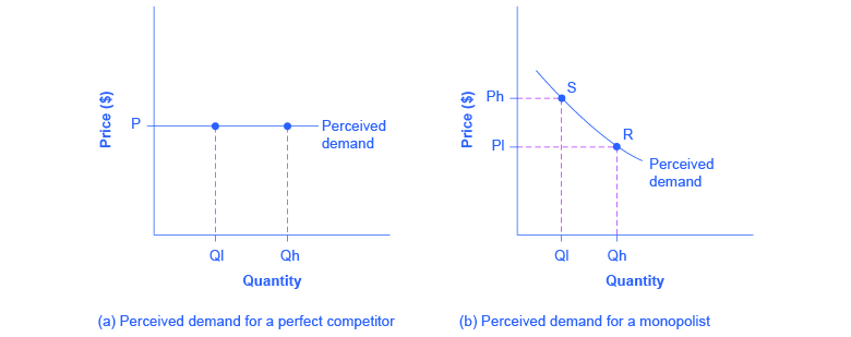 The left graph shows perceived demand for a perfect competitor as a straight, horizontal line. The right graph shows perceived demand for a monopolist as a downward-sloping curve.
