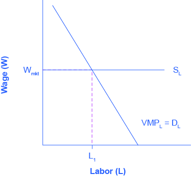 The graph shows the Marginal Product of Labor.  The x-axis is Labor.  The y-axis is Wage.  The curve proceeds from right to left in a downward direction.  A horizontal line indicating the going market wage projects from about halfway up the y-axis.  Where the curve and the horizontal line meet, it is point L1.  The caption provides context.
