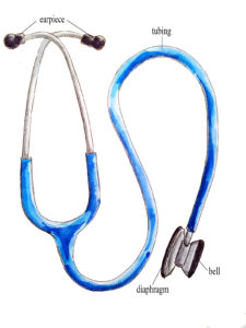 Stethoscope with bell and diaphragm capacity