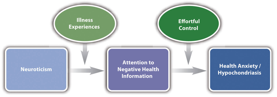 Figure 4.3 Simplified Representation of One Contemporary Theory of Hypochondriasis This theory focuses on key variables and the relationships among them.