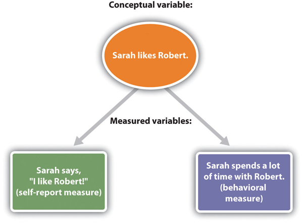 Conceptual and measured variables