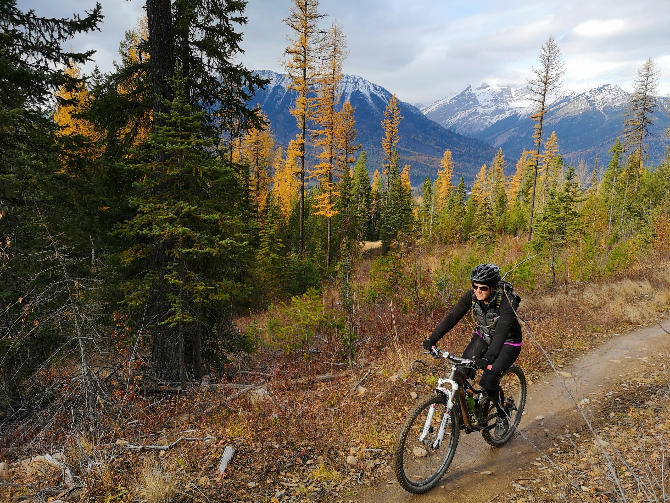 A woman mountain biking in the fall in forest with mountain range behind