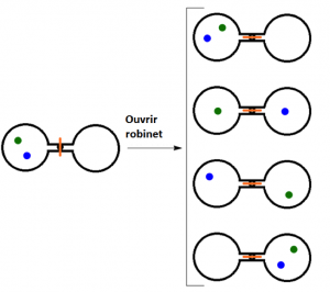 Quand le robinet est ouvert entre les deux flasques, les atomes peuvent se distribuées de 4 différentes manières.