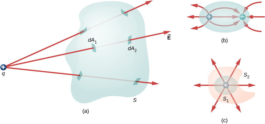 Figure a shows an irregular 3 dimensional shape labeled S. A small circle with a plus sign, labeled q is outside it. Three arrows labeled vector E originate from q and pass through S. The patches where the arrows pierce the surface of S are highlighted. The patch where one arrow enters the shape is labeled dA1 and the patch where the arrow emerges from the shape is labeled dA2. Figure b shows an oval with two small circles inside it. These are labeled plus and minus. Three arrow from outside the oval point to the circle labeled minus. Three arrows point from plus to minus. Three arrows point from plus to outside the oval. Figure c has an irregular shape labeled S2. Within it is a circle named S1. At its center is a small circle labeled plus. Six arrows radiate outward from here in different directions.