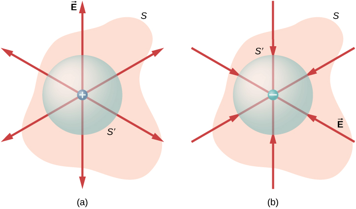 Figure a has an irregular shape labeled S. Within it is a circle labeled S prime. At its center is a small circle labeled plus. Six arrows radiate outward from here in different directions. Figure b has the same irregular shape S and circle S prime. At its center is a small circle labeled minus. Six arrows from different directions radiate inward to minus.