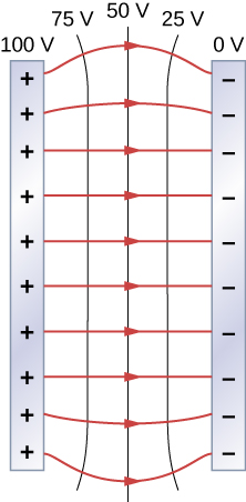 The figure shows two metal plates and the electric field lines between them. The potential of the left plate is 100V and right plate is 0V and there are equipotential lines of 75V, 50V and 25V between the plates.