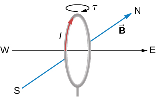 A vertical circular loop is shown along with the compass directions. The axis (perpendicular to the plane of the loop) is on the east-west line. The magnetic field points north. The current in the loop is circulates clockwise as viewed from the east. The torque on the loop is clockwise as viewed when looking down at the top of the loop.