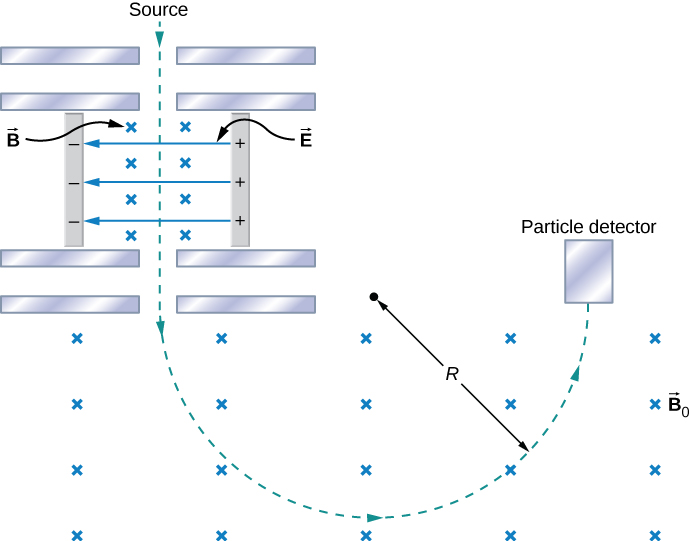 A schematic of the Bainbridge mass spectrometer. Charged particles moving down enter a region with electric field E pointing to the left and magnetic field B pointing into the page. The particle path continues in a straight line until it enters a region with no electric field. The magnetic field here is uniform, into the page, and magnitude B naught. The particle path in this region curves in a counterclockwise circle of radius R until it hits a particle detector.