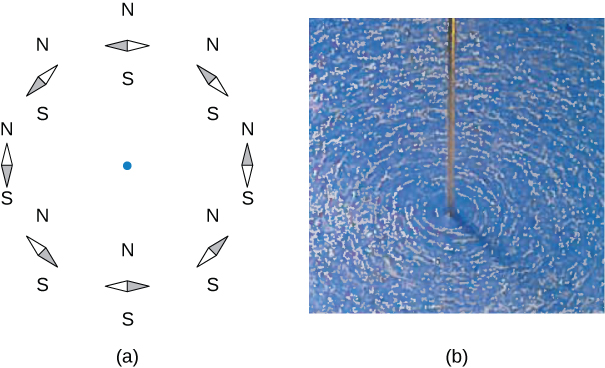 Figure A shows a circle formed by the small compass needles aligned with Earth's magnetic field. Figure B shows that iron filings sprinkled on a horizontal surface around a long wire delineate the field lines.