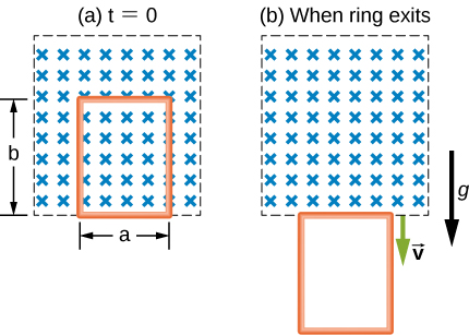 """Figure a shows a box with crosses in it. It is labeled t=0. An area within it is demarcated with breadth equal to a and length equal to b. Figure b shows the same box with crosses in it. It is labeled, """"when ring exits"""". The demarcated are from figure a is now below the box. There are two downward arrows labeled g and v."""