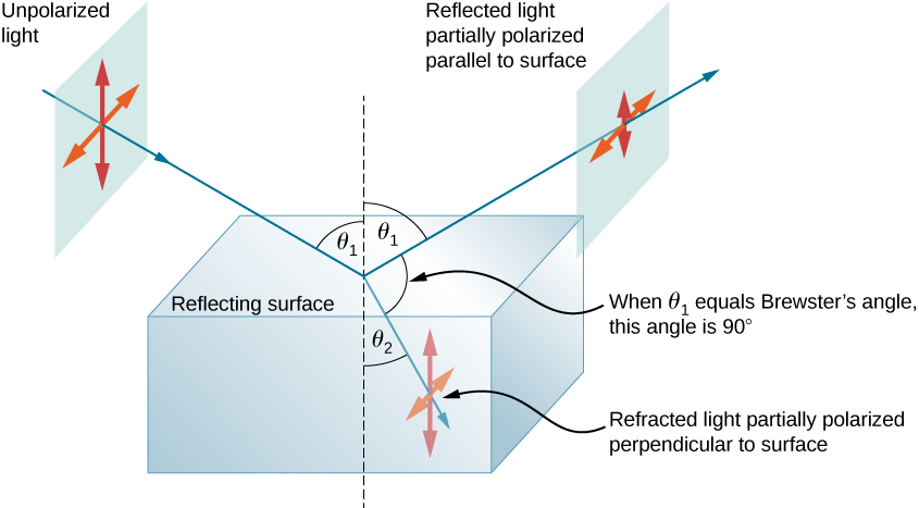The figure is a diagram that shows a block of glass in air. The reflecting surface is horizontal. A ray labeled unpolarized light starts at the upper left and hits the center of the block, at an angle theta one to the vertical. Centered on this incident ray is are two double headed arrows, one horizontal and the other vertical. From the point where this ray hits the glass block, two rays emerge. One is the reflected ray that goes up and to the right at an angle of theta one to the vertical, and the second is a refracted ray that goes down and to the right at an angle of theta two to the vertical. The reflected light is labeled as partially polarized parallel to the surface. Two double headed arrows, similar to those on the incident ray, are shown centered on the reflected ray, but the vertical arrow is significantly shorter than the horizontal one. The refracted ray is labeled as partially polarized perpendicular to the surface. Two double headed arrows, similar to those on the incident ray, are shown centered on the reflected ray, but the horizontal arrow is significantly shorter than the vertical one. A note indicates that when theta one equals Brewster's angle, the angle between the reflected and refracted ray is ninety degrees.