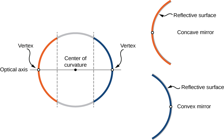 Figure a shows a circle, divided by two parallel lines, forming two arcs, orange and blue. A line labeled optical axis runs through the center of the circle, intersecting it at the mid-points of both arcs. Each mid-point is labeled vertex. Figure b shows the orange arc, labeled concave mirror, with the reflective surface shown on the inside. Figure c shows the blue arc, labeled convex mirror, with the reflective surface shown on the outside.