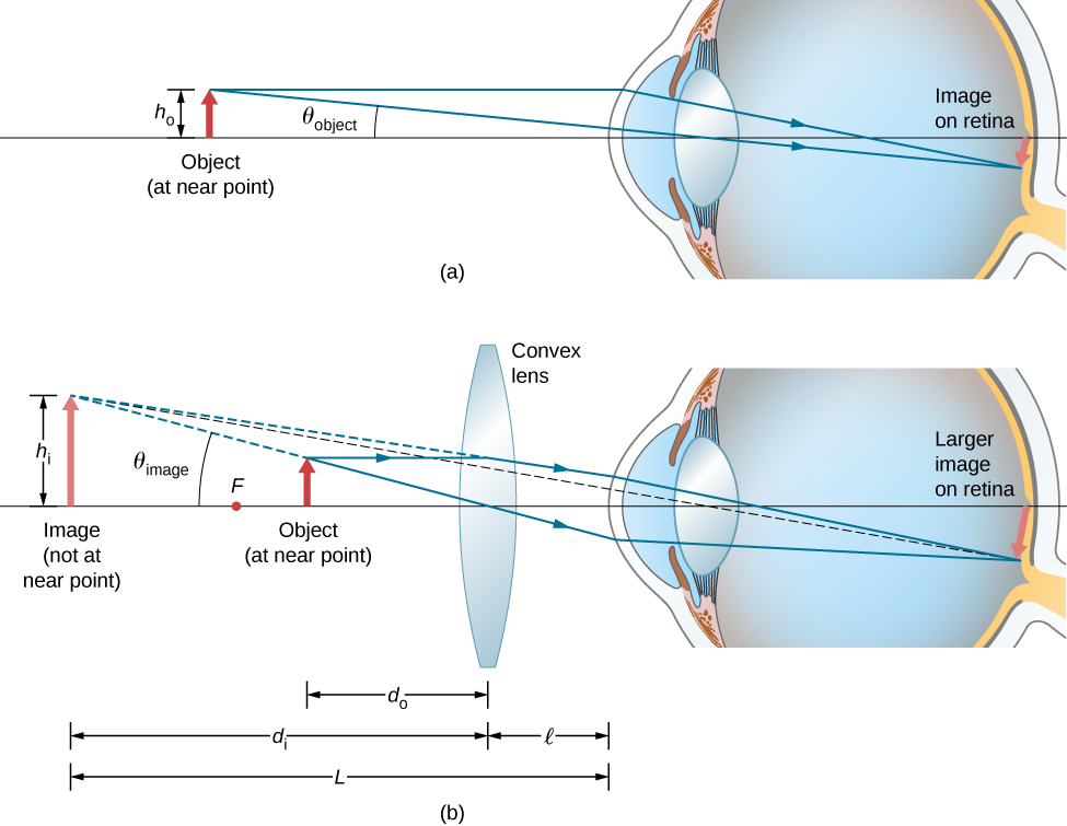 Figure a shows an object with height h 0 in front of an eye, at the near point. An image that is smaller than the object is formed on the retina. Figure b shows a bi-convex lens between the eye and the object. Rays from the object go through this and enter the eye to form a larger image on the retina. The back extensions of the rays deviated by the lens converge behind the object to form an image that is larger than the object. The distance of this image from the lens is d subscript i and that of the object from the lens is d subscript o. The distance of the lens from the eye is l. The distance of the image from the eye is L. The height of the image is h subscript i.