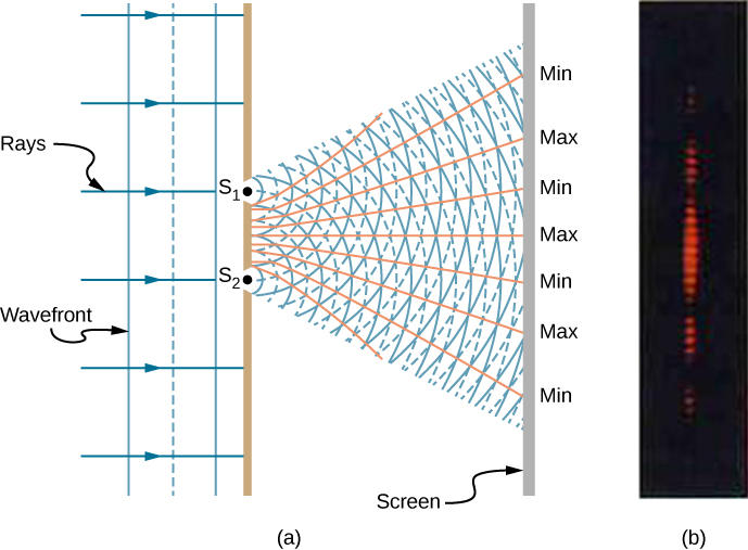 Left picture is a schematic drawing of the double-slit experiment. Monochromatic light enters the two slits S1 and S2. Light spreads out after travelling through the slits with the waves overlapping constructively and destructively. Right picture is a photograph of the fringe pattern that shows the bright spots aligned as a line.