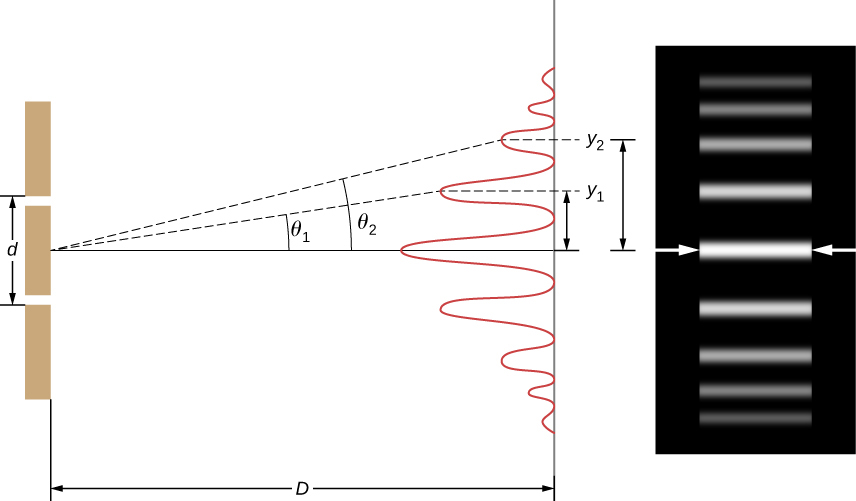 Left picture shows a double slit located a distance D from a screen, with the distance between the slits given as d. Right picture is a photograph of the fringe pattern that shows the bright lines at the positions where the waves interfere constructively.