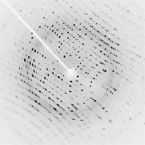 Figure shows a white background with a pattern of black dotted lines. There is a bright white spot in the center surrounded by a grey ring. A white line goes up and left from the spot.
