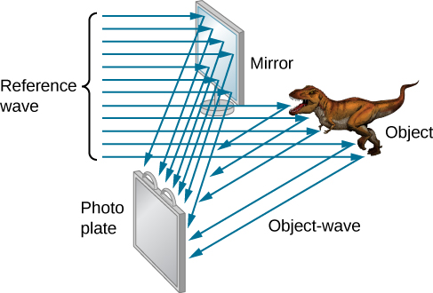 A mirror at the top faces left and a photo plate at the bottom faces right. A dinosaur labeled object is below the mirror, to the right. Parallel rays labeled reference wave enter from the left. Some fall on the mirror and are reflected to the photo plate. Some fall on the object are are reflected to the photo plate. The latter are labeled object wave.