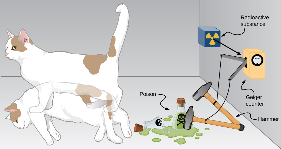 The Schodinger cat thought experiment, consisting of a Geiger counter, a vial of poison, a hammer, a radioactive substance, and a cat is illustrated. Each is shown in two states: The Geiger counter triggered and untriggered, the hammer up and down, the poison vial whole and broken, and the cat alive and dead.
