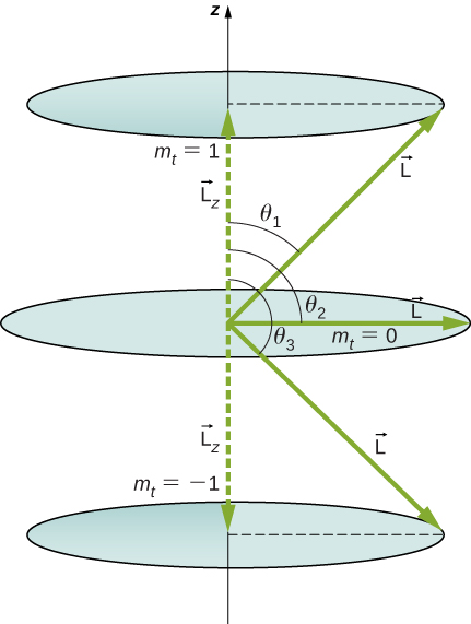 The image shows three possible values of a component of a given angular momentum along z-axis. The upper circular orbit is shown for m sub t = 1 at a distance L sub z above the origin. The vector L makes an angle of theta one with the z axis. The radius of the orbit is the component of L perpendicular to the z axis. The middle circular orbit is shown for m sub t = 0. It is in the x y plane. The vector L makes an angle of theta two of 90 degrees with the z axis. The radius of the orbit is L. The lower circular orbit is shown for m sub t = -1 at a distance L sub z below the origin. The vector L makes an angle of theta three with the z axis. The radius of the orbit is the component of L perpendicular to the z axis.