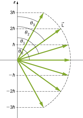 Seven vector, all of the same length L, are drawn at 7 different angles to the z axis. The z components of the vectors are indicated both by horizontal lines from the tip of the vector to the z axis and by labels on the z axis. For four of the vectors, the angle between the z axis and the vector is also labeled. The z component values are 3 h bar at angle theta sub three, 2 h bar at angle theta sub two, h bar at angle theta sub one, zero at angle theta sub zero, minus h bar, minus 2 h bar, and minus 3 h bar.