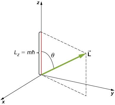 An x y z coordinate system is shown. The vector L is at an angle theta to the positive z axis and has positive z component L sub z equal to m times h bar. The x and y components are positive but not specified.