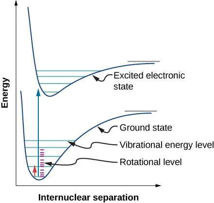 Figure shows a graph of energy versus internuclear separation. There are two curves on the graph. The curve at the bottom is labeled ground state and the one at the top is labeled excited electronic state. Both are similar in shape, with a sharp dip to a trough, followed by a slow rise till the curve evens out. The ground state curve has five horizontal blue lines bounded by the curve, which look like rungs of a ladder. These are labeled vibrational energy level. Between two blue rungs are smaller purple rungs labeled rotational level. There are four such purple rungs each, between the first and second blue rungs, the second and third blue rungs and the third and fourth blue rungs. There is an arrow pointing up from the center of the trough. To the left of this arrow is a smaller arrow pointing up. This extends from the first purple rung of the first blue rung to the second purple rung of the second blue rung. The excited state curve has four blue rungs.
