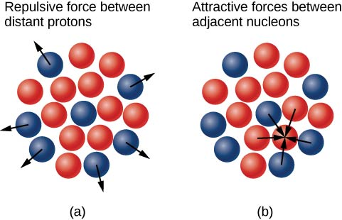Figure a shows a cluster of small red and blue circles. There is a blue proton in the center, surrounded by red neutrons. There are more protons at the periphery, which have arrows pointing outwards. Figure b shows the same cluster. Arrows show both protons and neutrons being attracted towards an adjacent neutron.